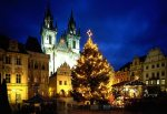 Illuminating the Gothic facades of Prague's Old Town Square, and casting its glow over the manger display of the famous Christmas market, is a grand tree cut in the Sumava mountains in the southern Czech Republic.